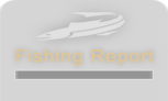 The Arizona Fishing Guides: Fishing Reports Page